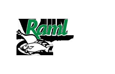 Raml Webshop, SEA & SEO