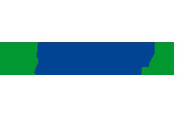 Thalia ERP/SAP Consulting